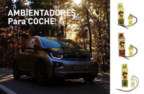 Ambientadores coche archives ambientadores para el hogar ambientadores mikado - Ambientadores para el hogar ...